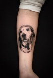 <h5>Nico - Kaiser Tattoo (Alicante)</h5><p>                                                                                                                                                                                                                                                                                                                                                                                                                                                                                                                                                                                                                                                                                       </p>