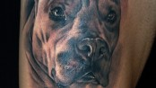tattoo destacado