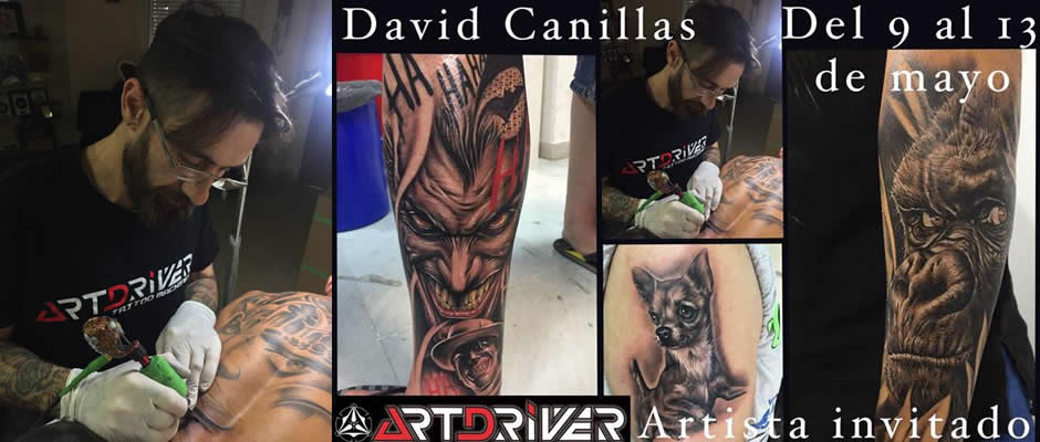 david canillas en proarts