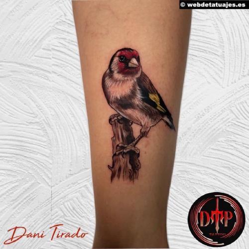 Tatuaje en DTP Tattoo, Mataró